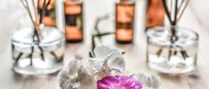 florais-de-bach-subestimados